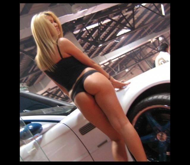 gatas_e_carros_20